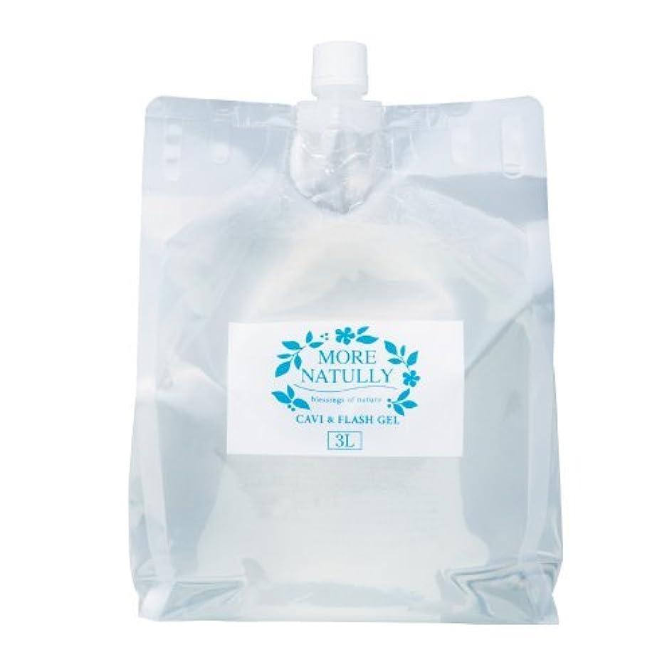 合計インフレーション縫い目モアナチュリー キャビ&フラッシュジェル 【ソフト】3kg
