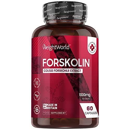 Forskolin Kapseln - 500mg Coleus Forskohlii Extrakt - 60 Kapseln - Für Veganer & Vegetarier geeignet - Buntnessel Extrakt - 100% Natürlich & Getestete Zutaten - Von WeightWorld