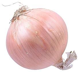 Onion Sweet Organic, 1 Each