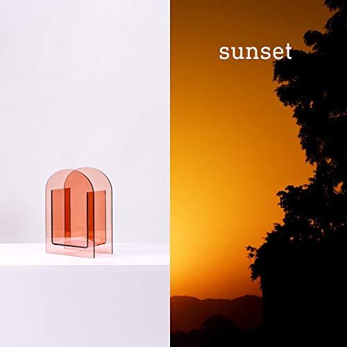 XKMY Home Decor vaso acrilico specchio vaso astratto forma onda ornamenti floreali decorazione della casa (colore : B)