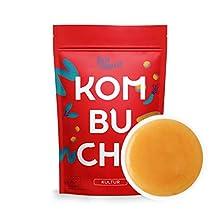 Original Kombucha Tee Pilz in Premium Größe Besonders Vitaler Scoby in Bio-Qualität für 1-5L Mit Kombucha Getränk Anleitung und Erfolgsgarantie von Fairment
