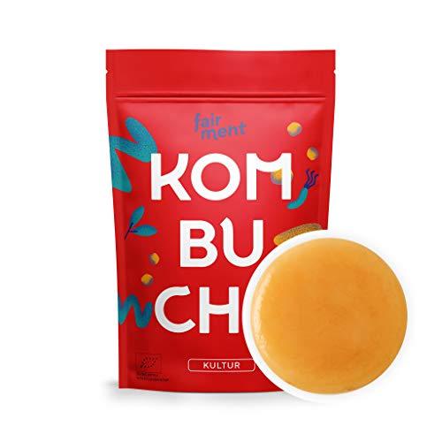 Original Kombucha Tee Pilz in Premium Größe Besonders Vitaler Scoby in Bio-Qualität für 1-5L Mit Kombucha Getränk Anleitung und Erfolgsgarantie von Fairment ®