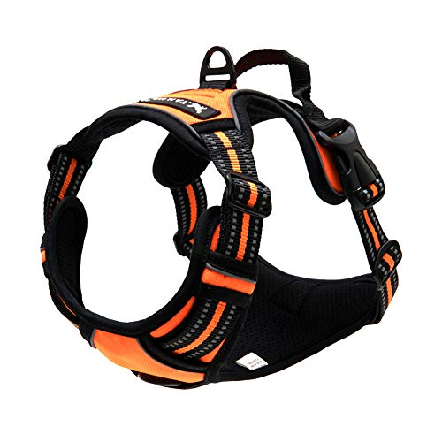 TAIL UP Dog Harness - Adjustable No-Pull Reflective Pet Harness Mesh Vest, Easy On/Off Mesh Harness Small Medium Large Dogs - Easy Control in Walking Hiking Training Small Orange