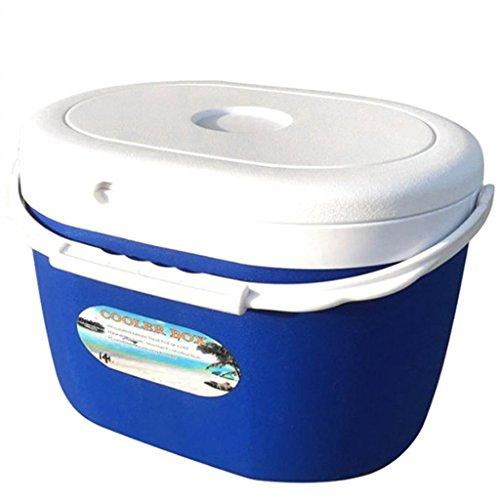 QIHANGCHEPIN mini refrigerador automático portátil del coche del viaje del refrigerador del hogar del camión 5L refrescó a la caja del calentador 6Degree (Color : Azul)