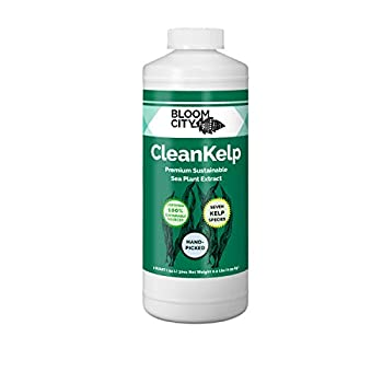 Organic Liquid Seaweed and Kelp Fertilizer Supplement by Bloom City Quart  32 oz  Concentrated Makes180 Gallons