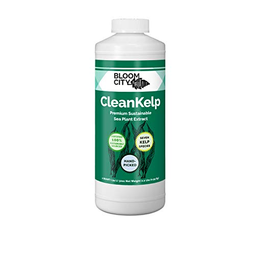 Organic Liquid Seaweed and Kelp Fertilizer Supplement by Bloom City, Quart (32 oz) Concentrated Makes180 Gallons