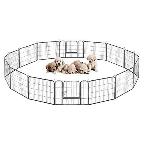 Bureau d'intégration canine et de la police des chiens (BICan)
