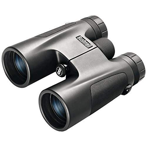 Bushnell Powerview - Roof 10x 42mm BK-7 Noir Jumelles