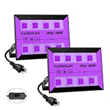 FAISHILAN 2 Pack 100W LED Black Lights, UV Flood Lights with Plug & Switch, IP66 Waterproof Blacklights, Black Light for Parties, Body Paint, Fluorescent Poster