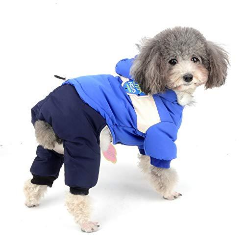 Zunea Hunde Schneeanzug für Kleine Hunde Wasserdicht Wintermäntel mit Kapuze Baumwolle Gepolstert warm Hundebekleidung Winddicht Kapuzenpullis Overall für Katzen Welpen Chihuahua Puppia Blau XL