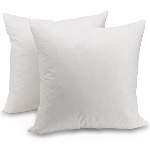 Lowest Prices! Cheer Collection Set of 2 Down and Feather Throw Pillow Insert | 20 x 20 Inches Squar...