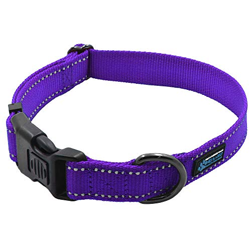 Max and Neo NEO Nylon Buckle Reflective Dog Collar - We Donate a Collar to a Dog Rescue for Every Collar Sold (Small, Purple)