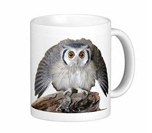 フクロウのマグカップ 3:フォトマグ(世界の野鳥シリーズ)