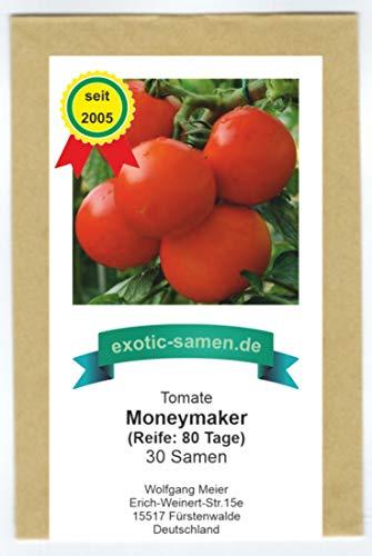 Moneymaker - rote Fleisch-Tomate aus England - 30 Samen