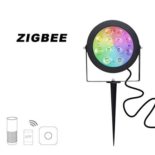 AMEIDD ZIGBEE LED Gartenlampe, 12W, RGBCCT, Farbtemperatur, Farbe und Helligkeit einstellbar, Wasserdichte Schutzart IP65, Work by APP Control
