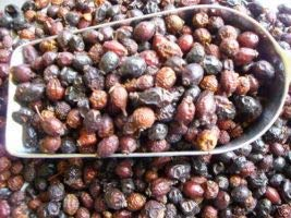 Horse-Direkt Hagebutten ganze Früchte (getrocknet) 5 kg, Pferde,Nager,Hamster,Nagerfutter