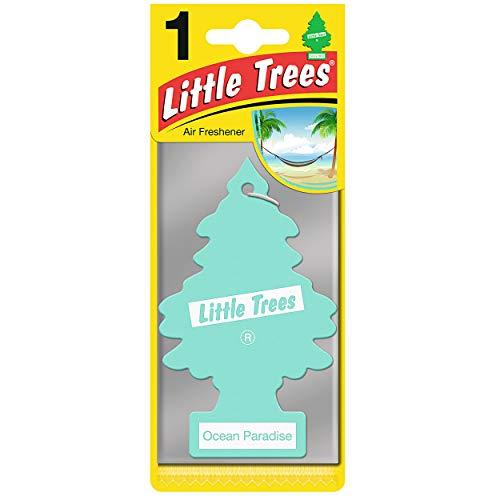 Little Trees MTR0067 Profumo per Auto, Ocean Paradise