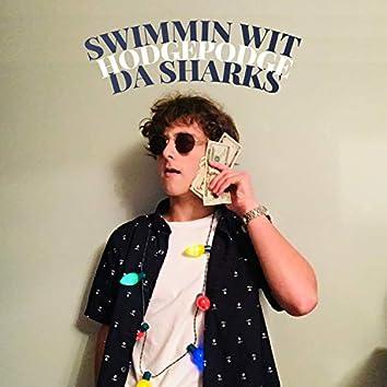 Swimmin' Wit Da Sharks