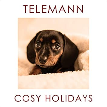 Telemann - Cosy Holidays