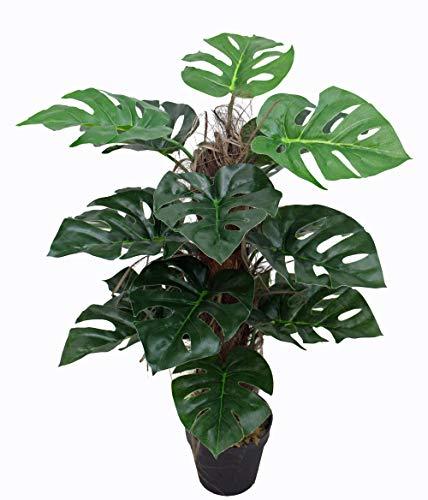 yanka-style Künstliche Monstera mit Topf ca. 60 cm hoch Kunstpflanze künstliche Pflanze Kunstbaum Baum Bäumchen Blume Deko Dekoration Geschenk (JWSL049)