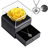 Preserved Real Rose with Love Heart I Love You Necklace 100 Languages Gift Set Handmade Flesh Flower Rose Gift Romantic Gifts for Her On Valentine's Day Anniversary Wedding (S-silverC: Yellow Rose)