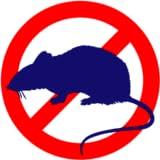 Anti Rat Pro
