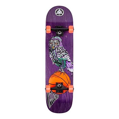 Welcome Hooter Shooter Factory - Skateboard completo su Bunyip Purple 8.0