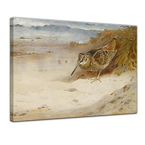 Wandbild Archibald Thorburn Hungrig und obdachlos - 70x50cm quer - Alte Meister Berühmte Gemälde Leinwandbild Kunstdruck Bild auf Leinwand
