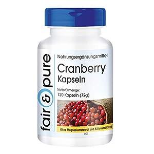 Arándano rojo 400mg - Extracto de Cranberry - Vegano - Alta pureza - 120 Cápsulas