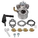 KaKaDz Kit de reemplazo de carburador, 13 unids/Set 798654 Reemplazos del Kit de carburador para 150000 Accesorios de cortacésped de césped Simple y Duradero Práctico y Conveniente