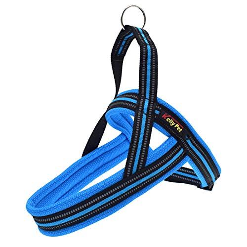 Pet ADRESH Collar DE Perros Arny A7 Poliéster Reflectante Arnés de Pecho Playa Leash Tracción Grandes Perros de Seguridad Cadena de Seguridad Cuello de Cuerda, Liqingshangmao (Color : Blue)
