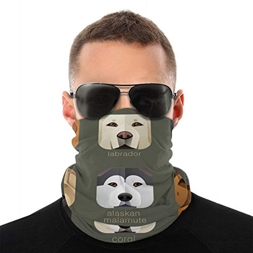 Magic Scarf Animal-Faces-for-app-Icons-Dogs-Set-Scarf Headband Headwrap Headwear Balaclava for Outdoors Sports Motor Bike Cycling Hiking Climbing Bandanas Anti-Pollution