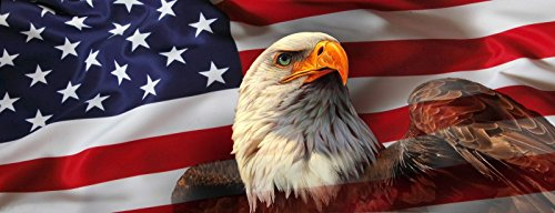 """American USA Flag Eagle Pick-UP Truck Back Window Graphic Decal Perforated Vinyl (Large 65"""" x 25"""")"""