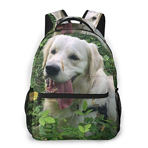 LNLN White Golden Retriever Puppy Laptop Backpack School Backpack for Men Women Lightweight Travel Casual Durable Daily Daypack College Student Rucksack 11 5in X 8in X 16in