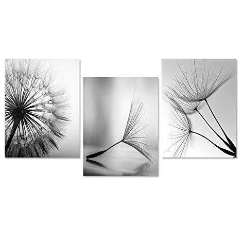 NO BRAND Cuadro en Lienzo Flor de Diente de león Moderno Negro Blanco Imágenes de Arte para la decoración del hogar Sala de Estar Cartel de Pared Abstracto 50x70cm (19.7