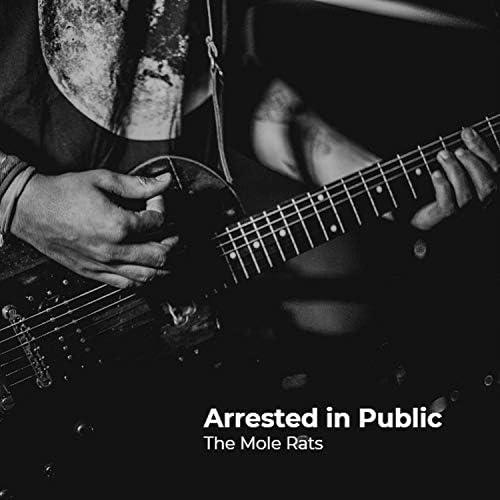 The Mole Rats