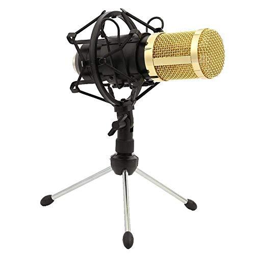 Unidirectionele microfoon met standaard, professionele 3,5 mm Jack Condenser microfoon, voor Computer PC Laptop Skype-opname