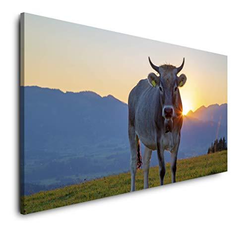 Paul Sinus Art Kuh im Allgäu 120x 60cm Panorama Leinwand Bild XXL Format Wandbilder Wohnzimmer Wohnung Deko Kunstdrucke