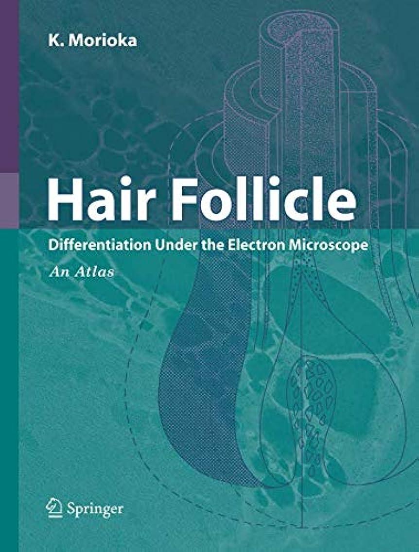 十分ではないスチュワード電信Hair Follicle: Differentiation under the Electron Microscope - An Atlas