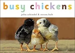 Busy Chickens (A Busy Book) by [John Schindel, Steven Holt]