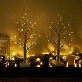EAMBRITE Lichterbaum Lichterzweige für Innen 24 Warmweiß LEDs Bäumchen Birken Dekozweige Batteriebetrieb Weihnachtsdeko für Zuhause Party Geburtstag Hochzeit Innendekoration (60cm/2ft) - 8