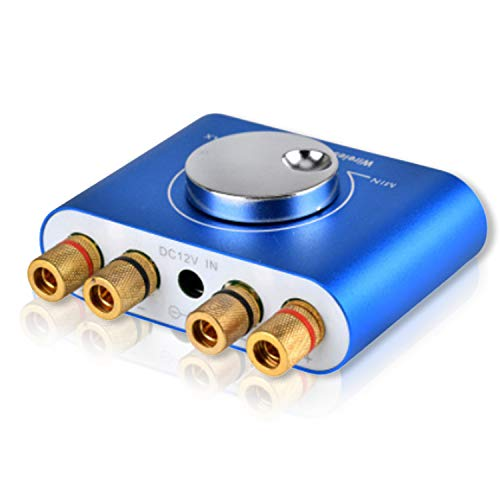 Blizim Mini Bluetooth V4.2 Amplificador Hi-Fi Estéreo 2.0 Canal 100W Wireless