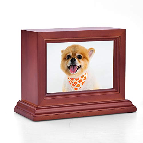 pet urn small dog - 5