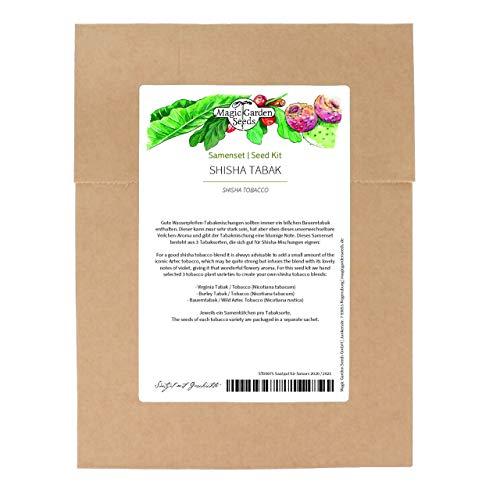 Juego de semillas de tabaco de shisha, 3 tipos de tabaco para mezclas de tabaco de pipa de agua