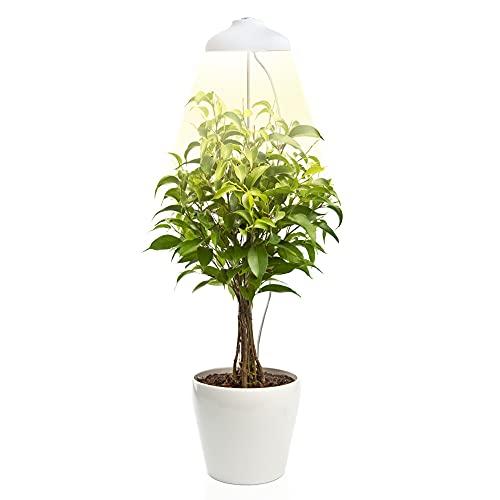 Lampada per Piante Grow LED Zenakio - Regolabile, Timer Automatico, 5V, Bianco - Lampada LED Piante Indoor - Grow Light per la Crescita - Lampadine LED Smart per Piante da Interno