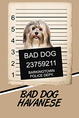 Bad Dog Havanese: Beer Tasting Journal Rate and Record Your Favorite Beers Collect Beer Name, Brewer, Origin, Date, Sampled, Rating, Stats ABV IBU OG ... meter, Note and Flavor wheel 120 pages 6'x9'