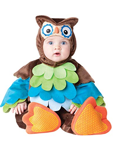 InCharacter Costumes Baby's What A Hoot Owl Costume, Brown/Multi, 18 to 24 months