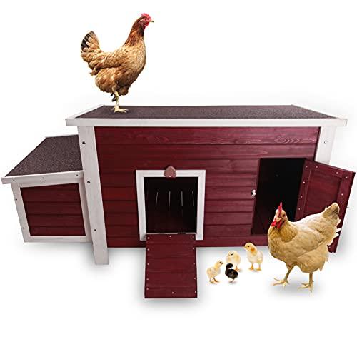 outdoor chicken coop