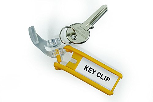 DURABLE Key Tags for DURABLE Key Cabinets, Plastic, 1-1/8 x 2-3/4 Inches, Assorted, 24-Pack (194900) Photo #3