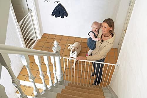 Baby Dan 57414-2400-06-75